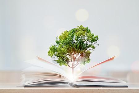 创意书树图片