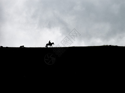 新疆草原骑马骏马乌云剪影牧羊人图片