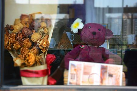 橱窗里的熊图片