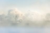 松花江上清晨的雾凇图片