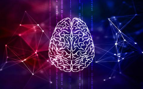 人工脑图片