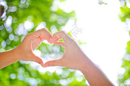 小清新阳光树叶爱心图片