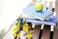 苹果与书图片