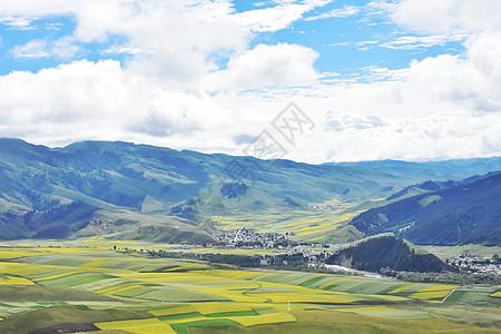 草原山坡图片