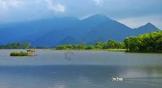 神农架大九湖图片