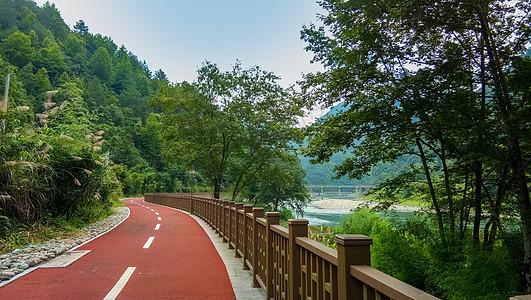 绿道跑到美丽乡村图片