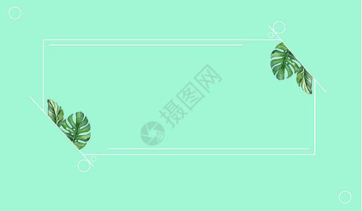 绿色淡雅夏季图片