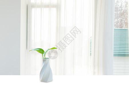 窗台水培绿植图片