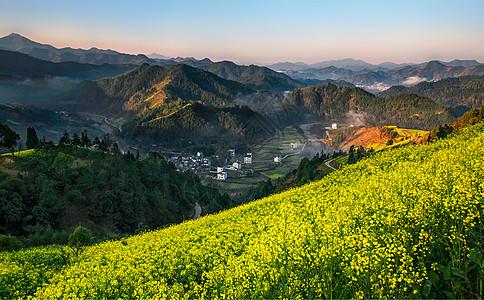 开满油菜花的山中村落图片