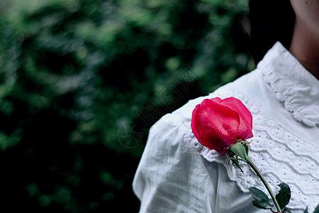 情人节收到玫瑰的女人图片