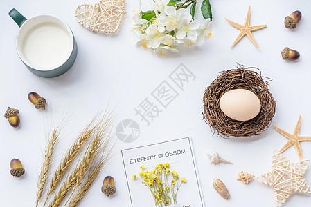 创意鸡蛋图片