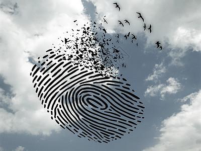 指纹飞鸟图片