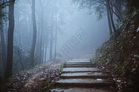 雾中的山林图片