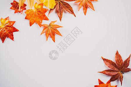 秋天枫叶文艺图片