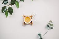 茶饮与绿植图片