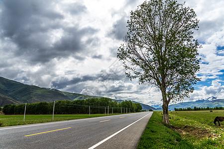 四川甘孜317国道图片