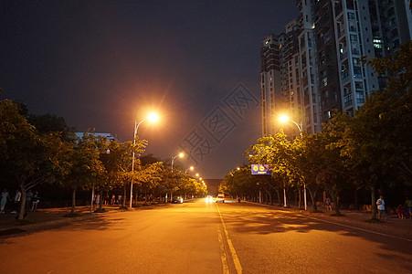 西华大学校园路一旁图片
