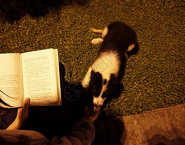 美女与狗傍晚夜读图片
