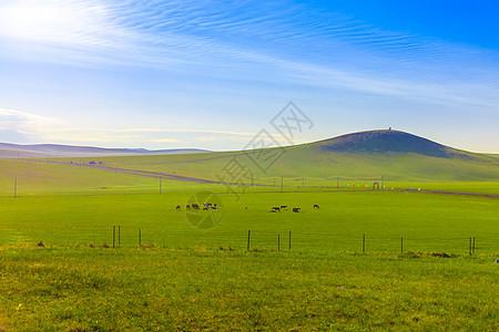 新西兰仙境格林诺奇草原美景图片