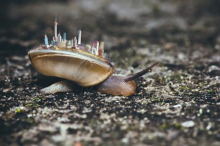 背着城市的蜗牛图片