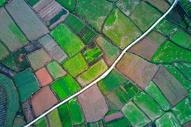 航拍阡陌纵横的田野图片