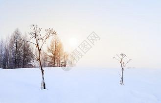 冬日暖阳简约背景图片
