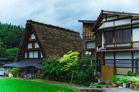 日本白川乡的夏日图片