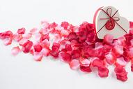 花瓣与礼盒图片