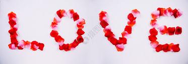 花瓣组成LOVE英文图片