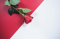 情人节创意广告图片