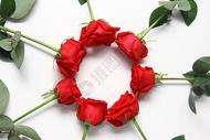 七夕情人节红玫瑰白色静物背景素材图片