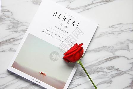 书本上的一朵红玫瑰静物背景素材图片