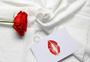 ins风格七夕情人节红玫瑰白色静物背景素材图片