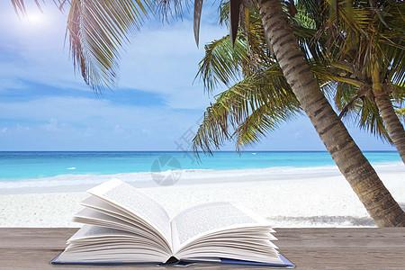 海边椰子树下的书图片