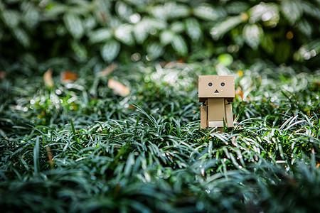 盒子小人阿楞的故事图片