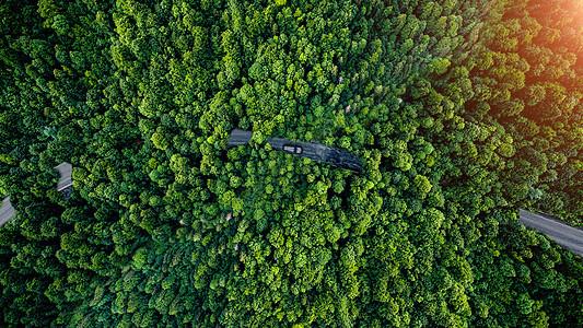 穿越森林的公路图片