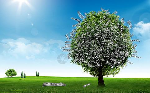 长满美元的树图片