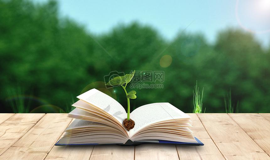 发芽的书本图片