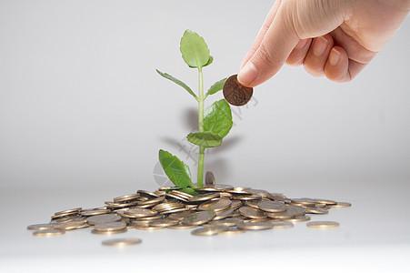投资升值增长金融图片