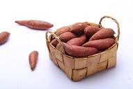 红薯500547739图片