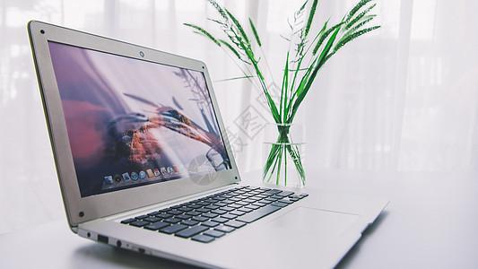 花瓶绿叶与笔记本电脑图片