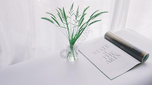 花瓶绿叶与杂志图片