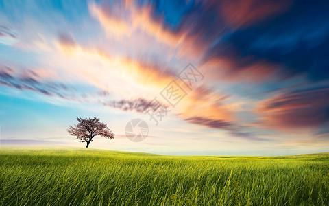 草原上唯美的风光图片