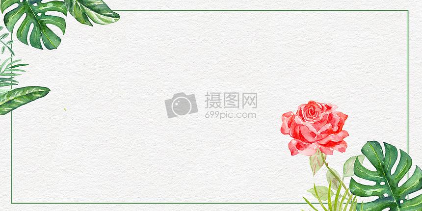 绿叶红花背景图片