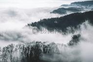 大气山顶树林忧郁欧美极简自然风景照图片
