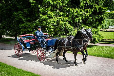俄罗斯圣彼得堡复古马车图片