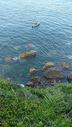 海自然风景图片