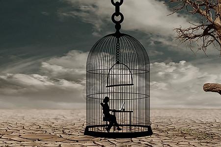 牢笼里的世界图片
