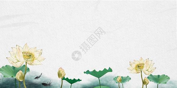 荷塘风光背景图片