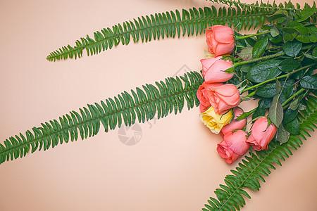 浪漫的花朵图片
